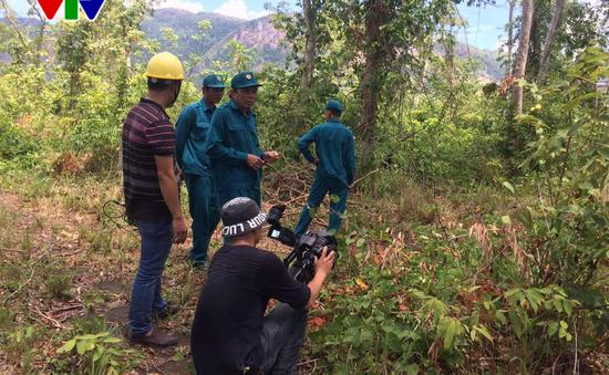 Lâm tặc manh động, Khánh Hoà tăng cường bảo vệ rừng căm xe