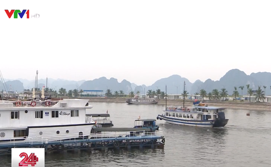 """Trao nhãn sinh thái """"Cánh buồm xanh"""" cho tàu du lịch trên vịnh Hạ Long"""