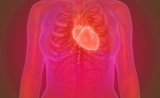 Tuổi thọ của tim quyết định các bệnh tim mạch và nguy cơ đột quỵ