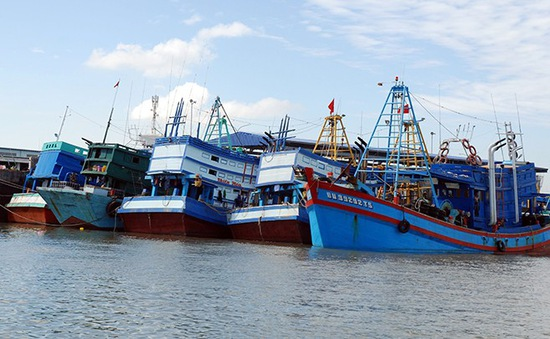 8 tỉnh miền Tây hợp tác quản lý hoạt động tàu cá trên biển