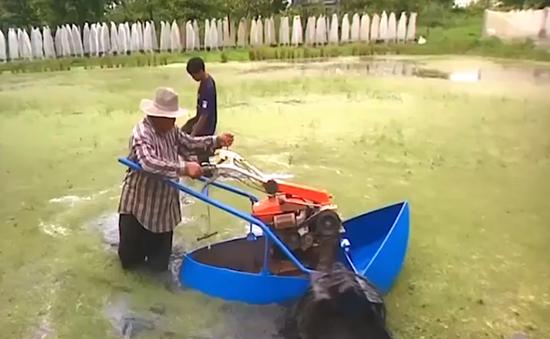 Người đàn ông Thái Lan giữ đất ở gần Thủ đô đề làm nông