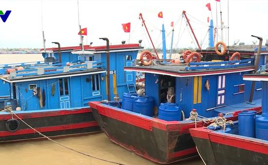 Ủy ban Nghề cá đánh giá cao nỗ lực gỡ thẻ vàng thủy sản của Việt Nam