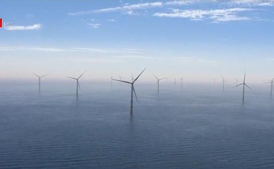 Trang trại gió lớn nhất thế giới đi vào hoạt động