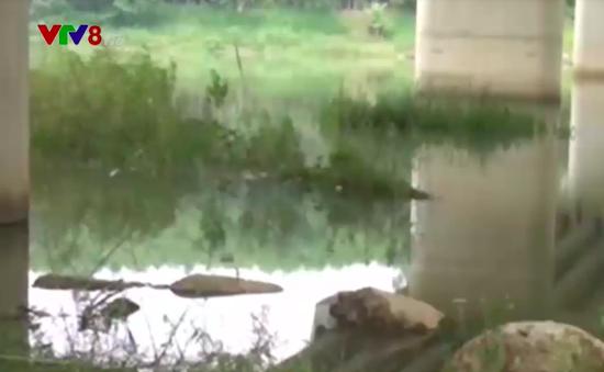 Lại thêm vụ đuối nước khiến 2 học sinh Quảng Ngãi tử vong