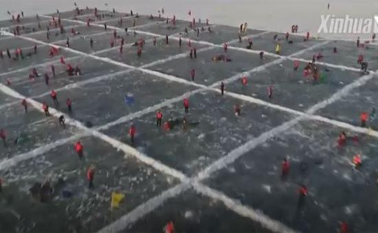 Độc đáo cuộc thi câu cá trên băng tại Trung Quốc