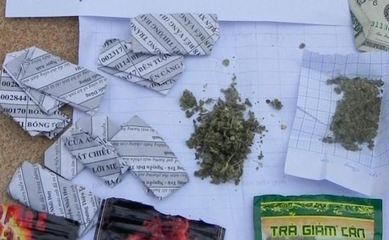 Bình Định: Gần 50% đối tượng nghiện ma túy sử dụng cỏ Mỹ