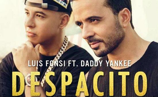 Despacito - Hiện tượng vô tiền khoáng hậu của âm nhạc Mỹ Latin