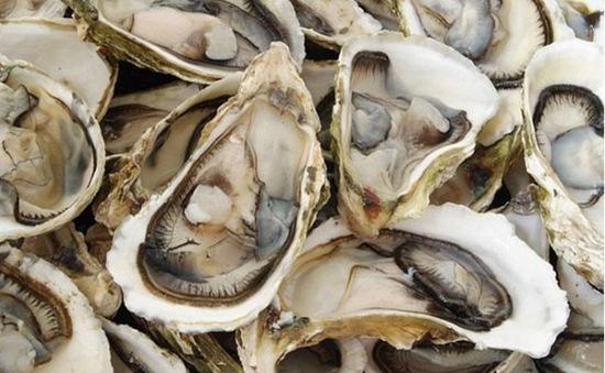 Ăn hàu sống có thể bị nhiễm khuẩn gây hoại tử
