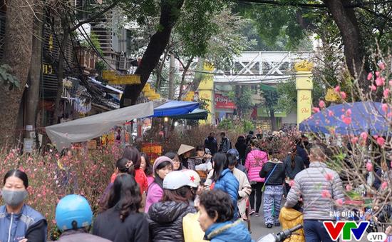 Hà Nội tổ chức 63 chợ hoa xuân dịp Tết Nguyên đán