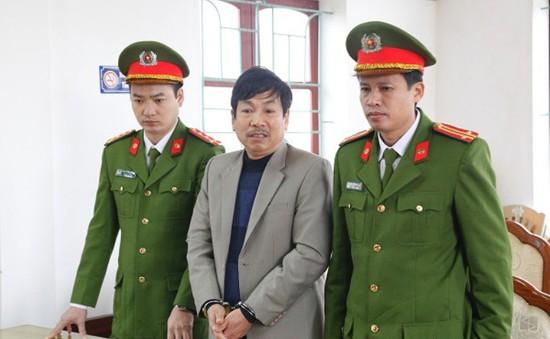 Khởi tố bị can, bắt tạm giam đối tượng hủy hoại rừng Hương Khê, Hà Tĩnh