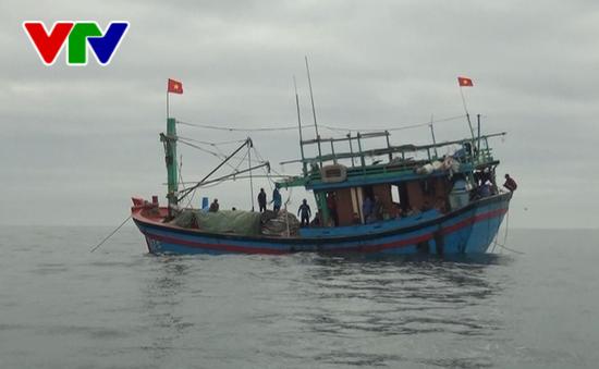 Phú Yên khẩn trương tìm kiếm ngư dân mất tích