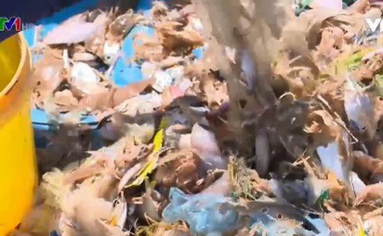 Ngăn rác thải nhựa đổ ra biển