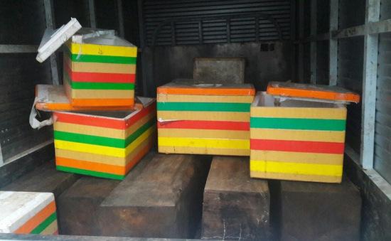 Đà Nẵng phát hiện xe tải chở gỗ không có nguồn gốc xuất xứ