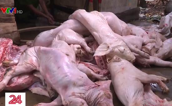 Thu giữ gần 1 tấn thịt lợn bệnh, lợn bẩn ở Đồng Nai