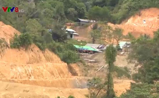 Chủ tịch UBND tỉnh Quảng Nam trả lời về thả nổi chất độc Cyanua