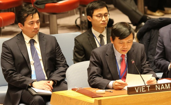 Việt Nam kêu gọi Hội đồng Bảo an LHQ thúc đẩy sự tuân thủ các nghị quyết về tình hình ở Trung Đông