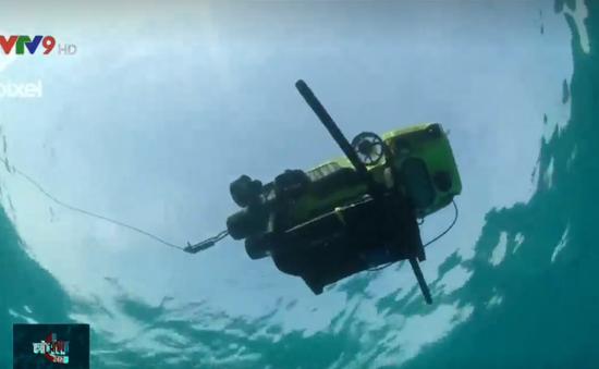 Dùng robot di chuyển san hô