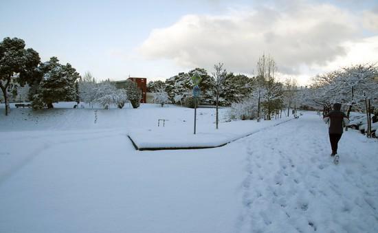Châu Âu tê liệt vì tuyết
