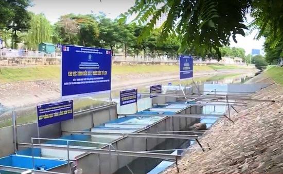 Xem xét nhân rộng mô hình xử lý nước sông Tô Lịch