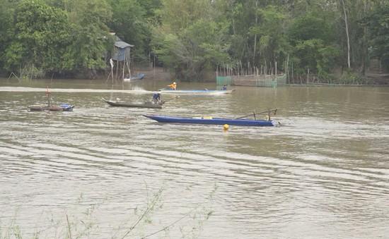 Nhộn nhịp mùa cá ra sông