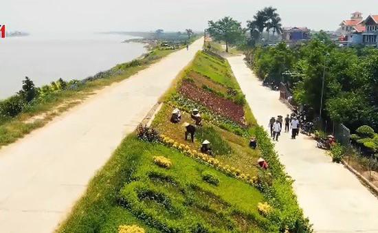 Hơn 52,4% số xã đạt chuẩn nông thôn mới