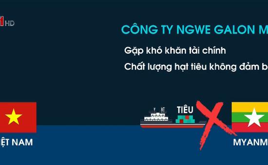 Cảnh báo mất hàng khi xuất khẩu hồ tiêu sang một số thị trường