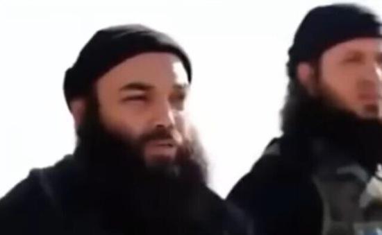 Người phát ngôn của IS bị tiêu diệt ở Bắc Syria
