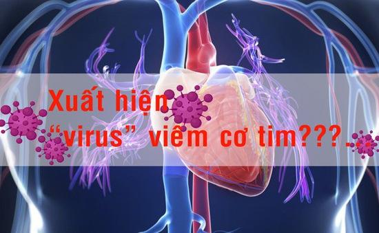 """[Infographic] - Thực hư """"virus"""" viêm cơ tim?"""