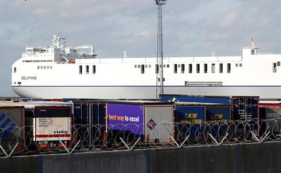 Cảnh sát Bỉ chưa kết thúc điều tra tại cảng Zeebrugge