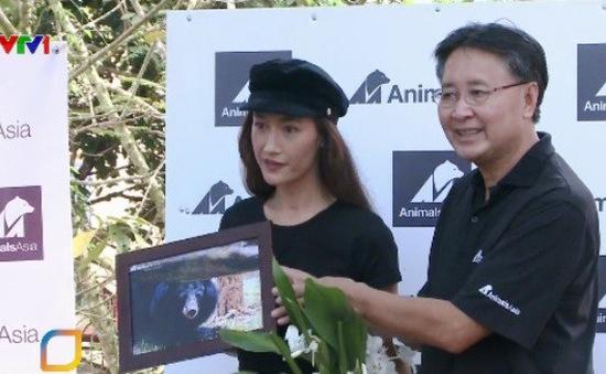 Chung tay bảo tồn loài gấu Việt Nam