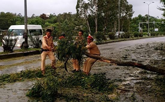Miền núi Quảng Nam khắc phục sau bão số 5