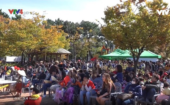 Lễ hội đa văn hóa người nước ngoài tại Hàn Quốc