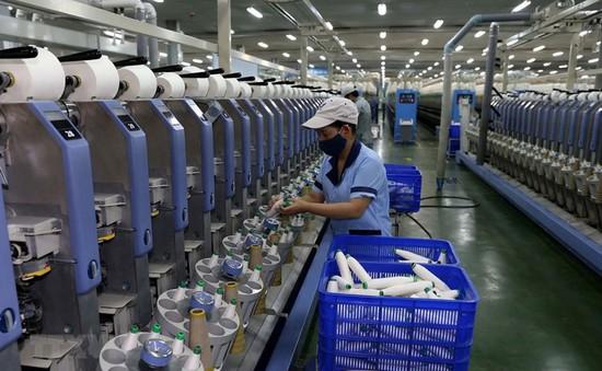 Fitch Ratings: Kinh tế Việt Nam là điểm sáng trong khu vực