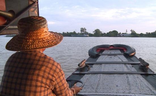 Người đưa đò Cồn Sơn