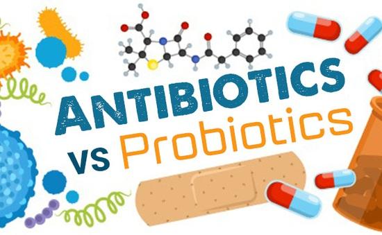 Bổ sung men vi sinh khi uống kháng sinh: Nên hay không?