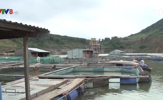 Quảng Nam phát triển kinh tế lòng hồ thủy điện