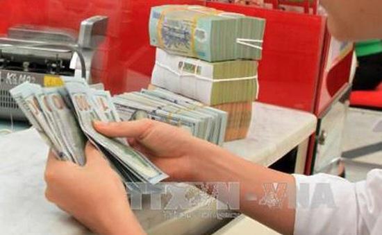 Giá USD tại các ngân hàng đồng loạt giảm mạnh