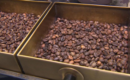 Giá cà phê xuất khẩu thấp nhất 10 năm qua