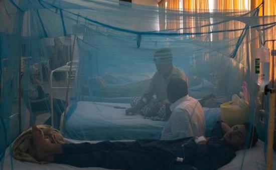 Số ca sốt xuất huyết tại Pakistan tăng cao kỷ lục