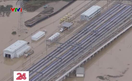 Nhật Bản thay toàn bộ tàu cao tốc bị ngập sau bão Hagibis