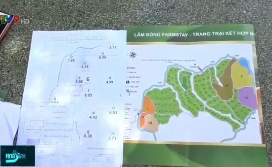 Phân lô, bán đất rừng tại Lâm Đồng: Siết chặt quản lý, ràng buộc trách nhiệm của chủ rừng