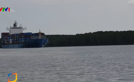 Thông tuyến luồng tạm trên sông Lòng Tàu
