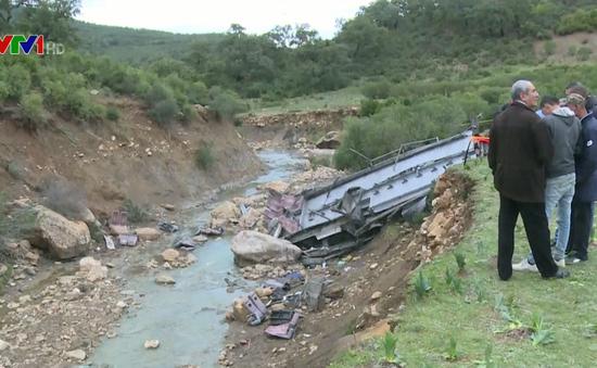 Xe chở khách du lịch lao xuống vách núi ở Tunisia, 24 người thiệt mạng