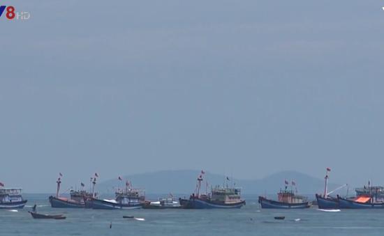 Quảng Ngãi thanh tra công tác đăng kiểm tàu cá