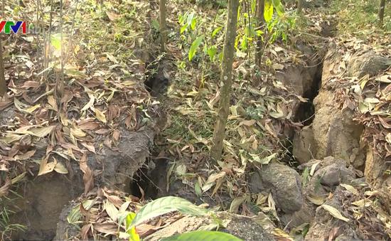 Thái Nguyên: Xuất hiện sạt lở, vết nứt lớn tại Núi Hồng