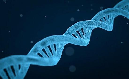 Phát hiện biến thể gene gây vô sinh ở nam giới