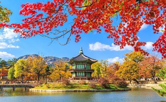 Những điểm đến tuyệt vời cho các hoạt động ngoài trời vào mùa Thu Hàn Quốc