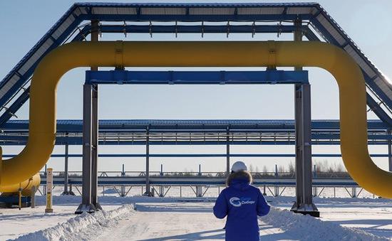 Nga - Trung Quốc khai trương đường ống dẫn khí đốt lịch sử