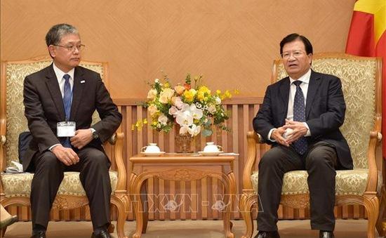 Việt Nam - Nhật Bản thúc đẩy ngoại giao nhân dân