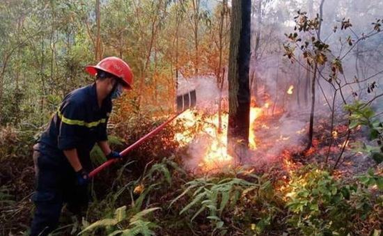 Khống chế vụ cháy rừng ở Bắc Giang